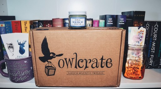 Owlcrate box in bookcase