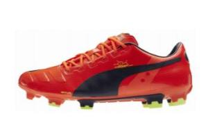 PUMA evoPOWER boot