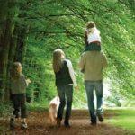 coillte outdoors trails forest walks