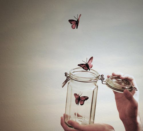butterflies flying away out of jar