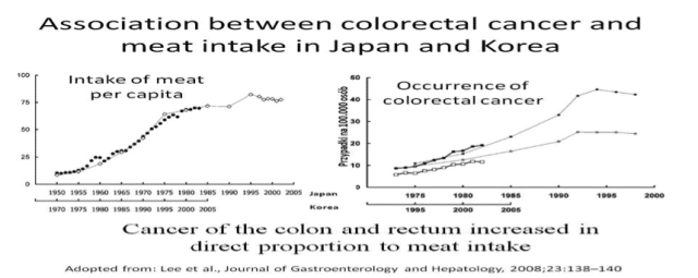 colorectal cancer and meat intake in japan
