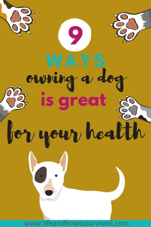 Lots of studies confirm that having a dog in your life is great for your health