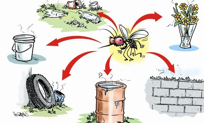 Awareness drive on dengue