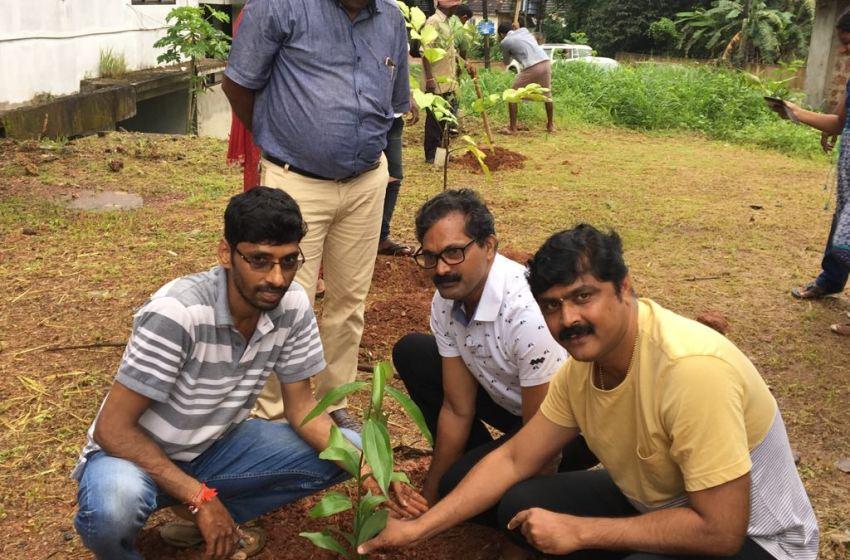 Saplings as temple prasadam to spread green message