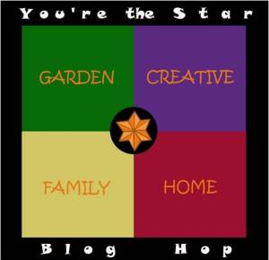 You're the Star Blog Hop