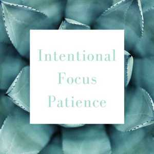 Words for 2017: Intentional. Focus. Patience.