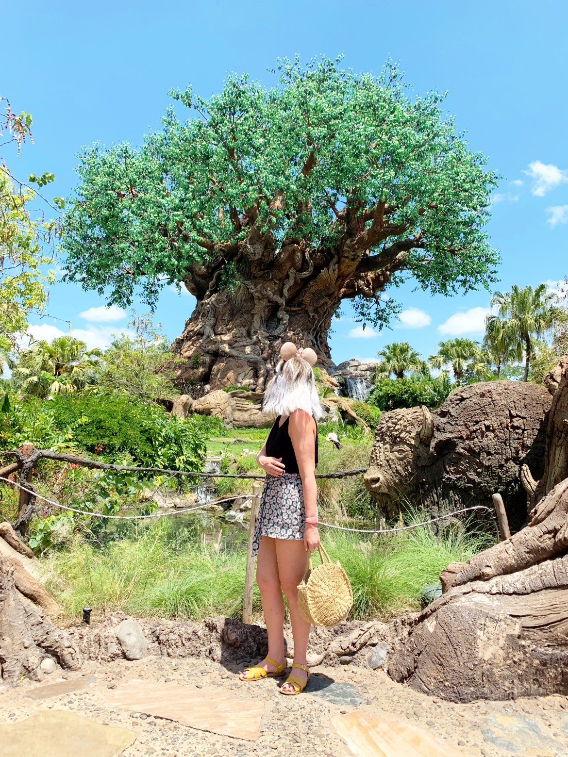 Instagram Walls of Walt Disney World