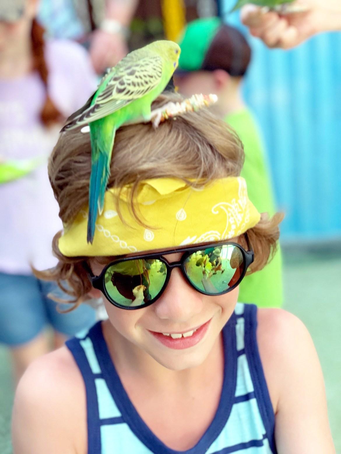 Five Reasons to visit Gatorland, Orlando