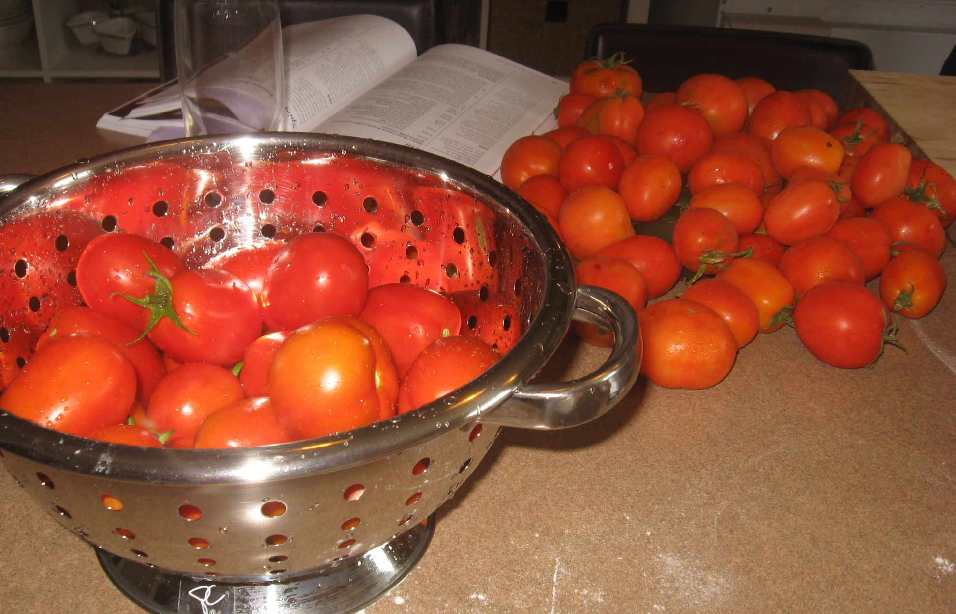 A small fraction of our tomatoes.