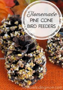 homemade-pine-cone-bird-feeders