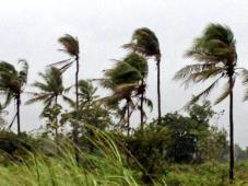 typhoon yolanda brushes near bohol