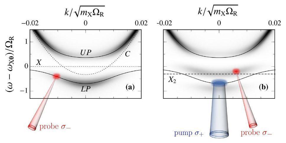 Applying quantum-impurity theory to quantum fluids of light