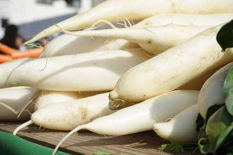 養胃食物 - 蘿蔔