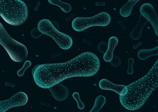 什麼是益生菌?