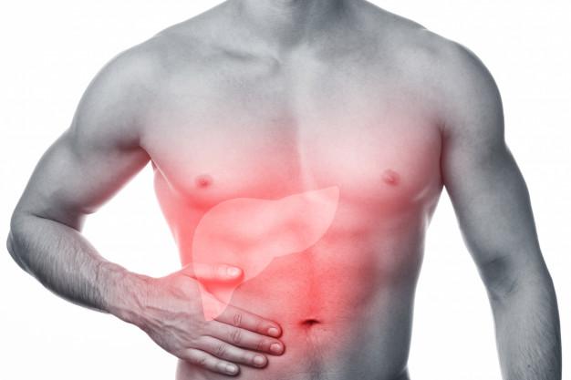 肝臟對人體的6大功能,5招改善肝健康!