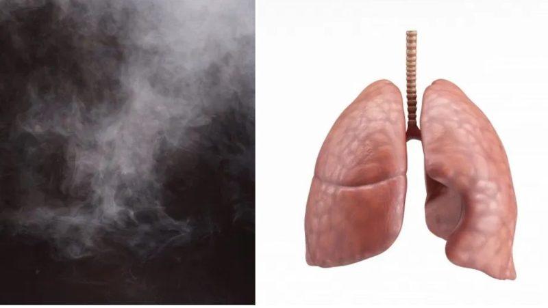 這5點傷肺部不亞於吸煙!小心廚房油煙引發呼吸系統疾病😷
