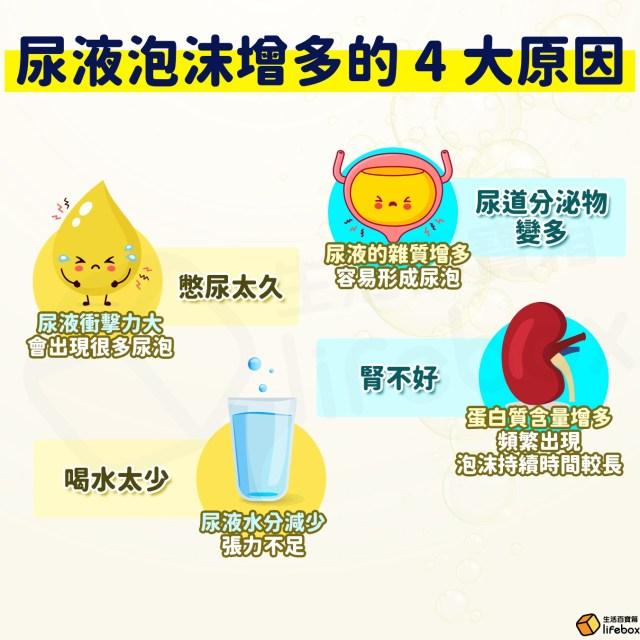 尿液泡沫增多的4大原因