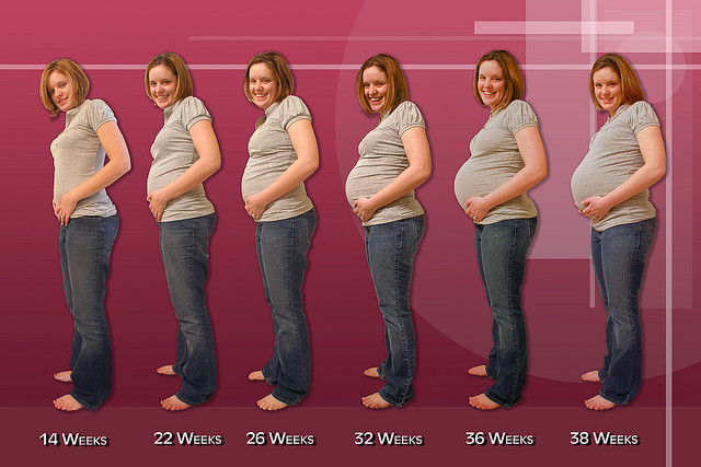 pregnancy, pregnancy photos, pregnancy progress