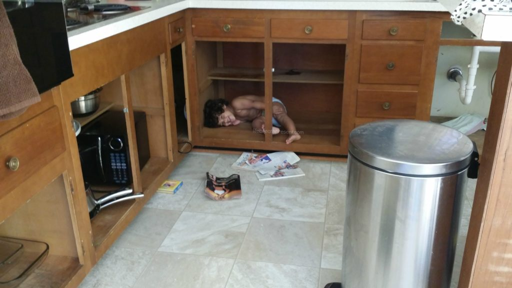Monkey Kitchen Cabinet