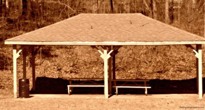 shelter, park, neighborhood
