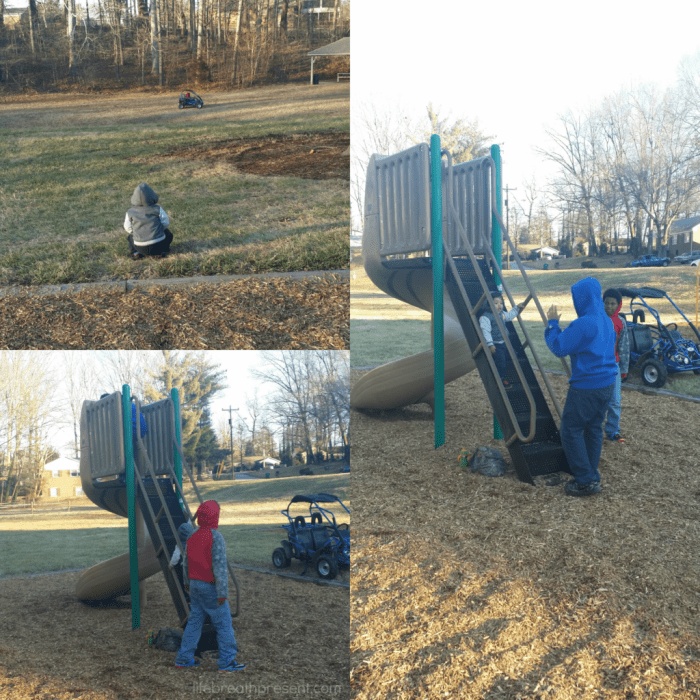 playing, neighborhood, park, play, slide, big boys, older children, toddler, fun, winter