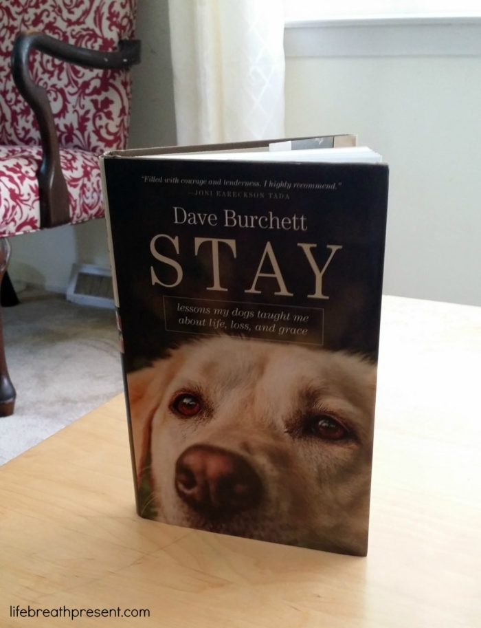 stay, dave burchett, tyndale publishers, book, books, book review, dog, life, lessons, grief, loss, grace