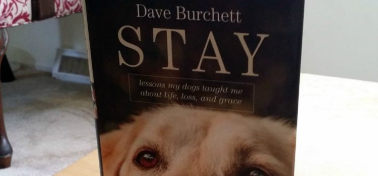 Stay: Lessons My Dogs Taught Me About Life, Loss, and Grace {Book Review}