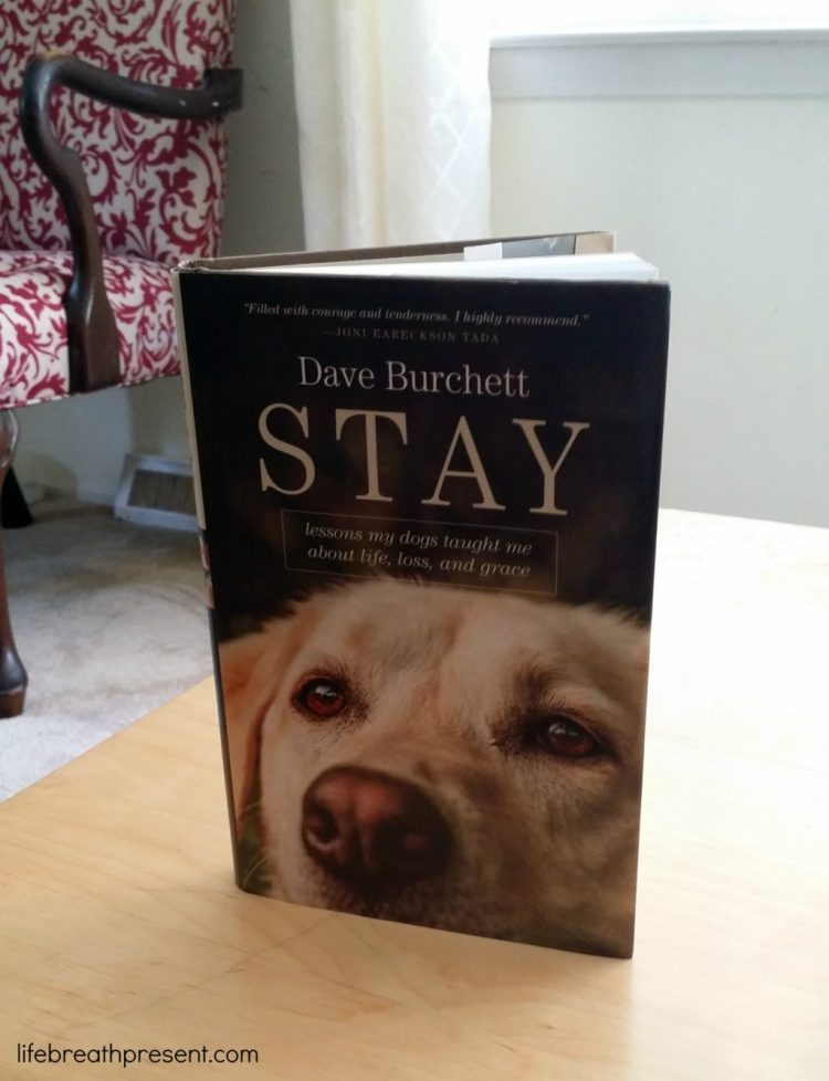 stay, dave burchett, tyndale publishers, book, books, book review, dogs, life, lessons, grief, loss, grace