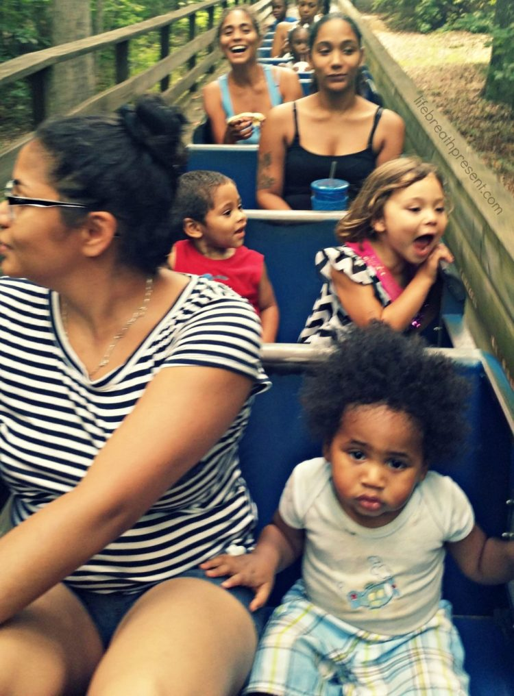 train, family, fun, birthday, park, cousin