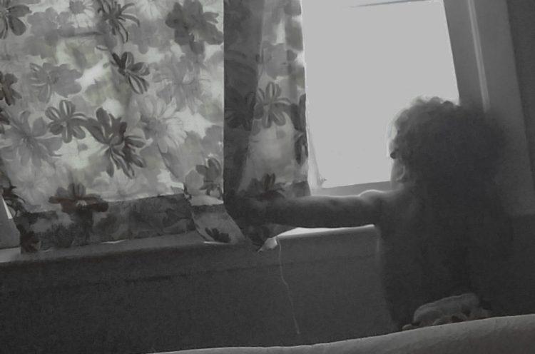 turtle boy looking window