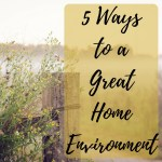 5 Ways to a Great Home Environment