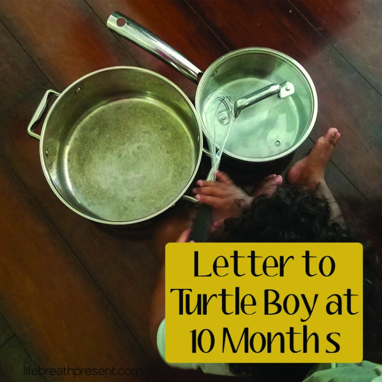 turtle boy, growing, family, growing up, love, 10 months, walking, eating, opinionated, letters, motherhood, parenting