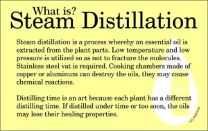 What is steam distillation