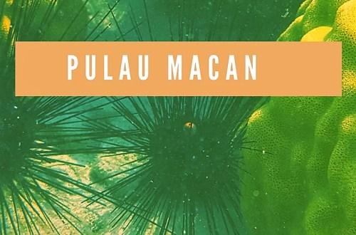 Pulau Macan