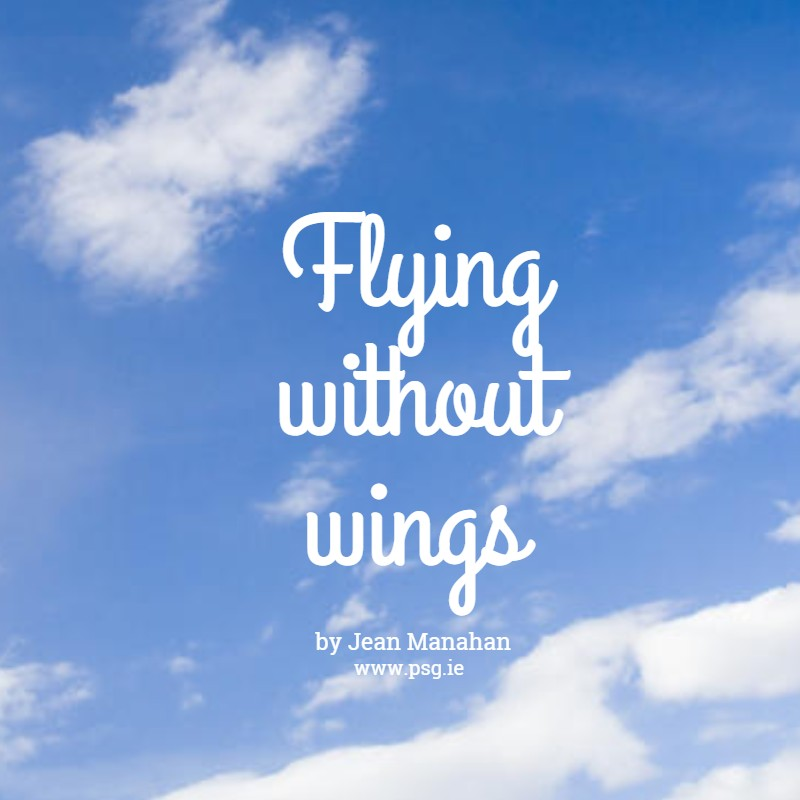 Flying Without Wings  Everything Is Possible!executive
