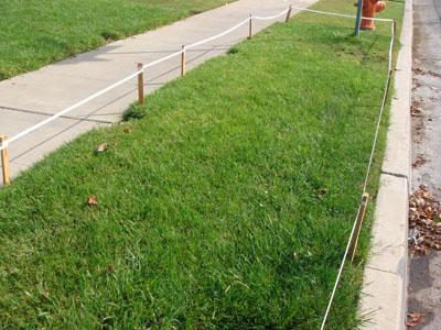 frontyard parkway xeriscaping (drought tolerant) before