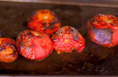 roasted tomatoes: Tomatoes blistered from roasting under the broiler Roasted Tomato Salsa