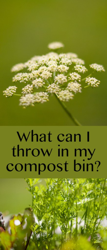 What can I throw in my compost bin?<img src=