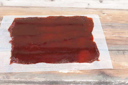 What do you do when life gives you strawberries? If you're like me, you decide to make Strawberry Fruit Roll-Up. Fruit smash. Fruit leather. Whatever you call it, it's fun! https://lifecurrentsblog.com
