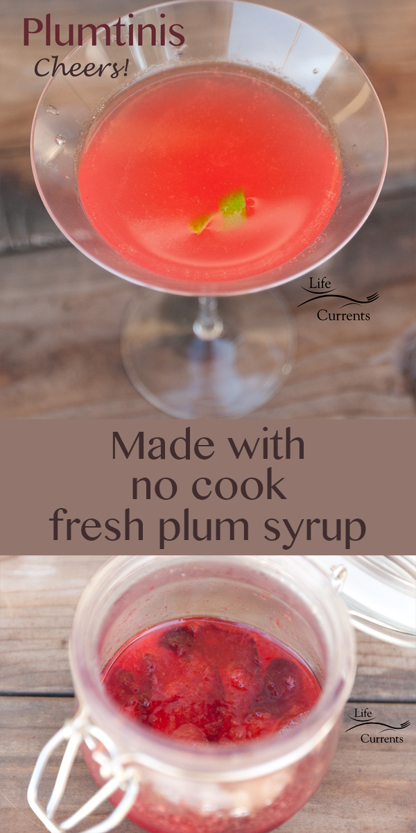 Plum Syrup for Plumtinis Recipe -- Great for sipping on a hot summer day