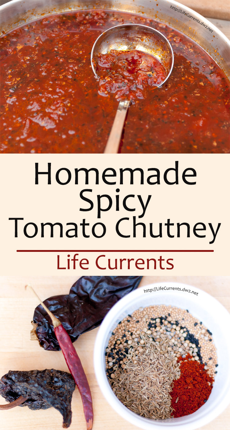 Homemade Spicy Tomato Chutney is savory and sweet, just the perfect balance of flavors. Great for topping everything!