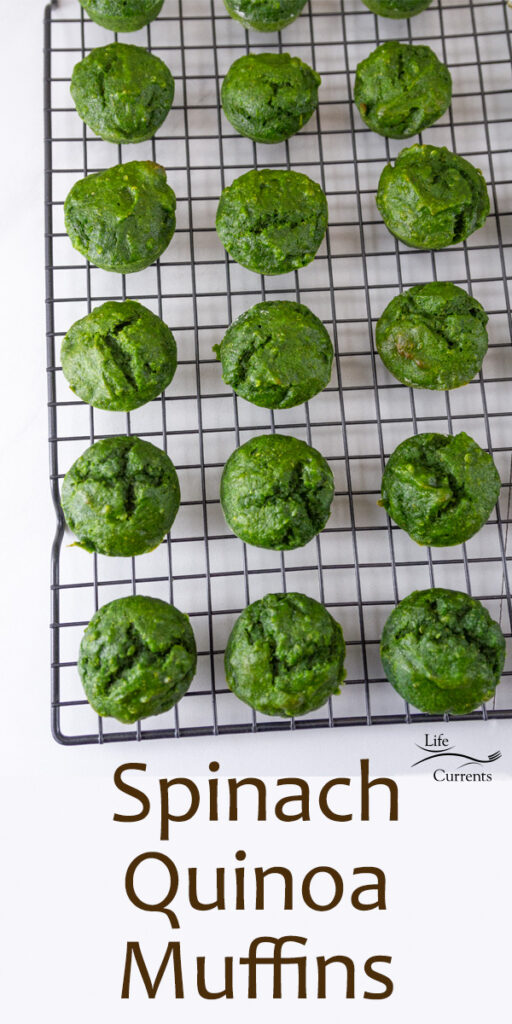 little green muffins on a cooling rack, title on bottom of image: Spinach Quinoa Muffins.