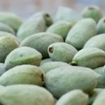 fuzzy green almonds, just slightly underripe