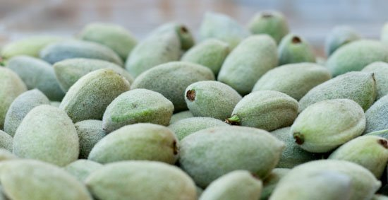 fuzzy green almonds, just slightly underripe