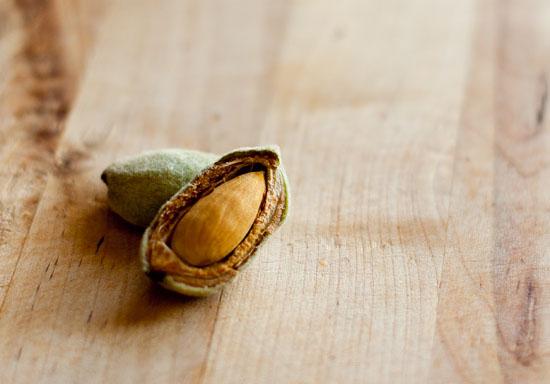 Green Almonds cracked open almond