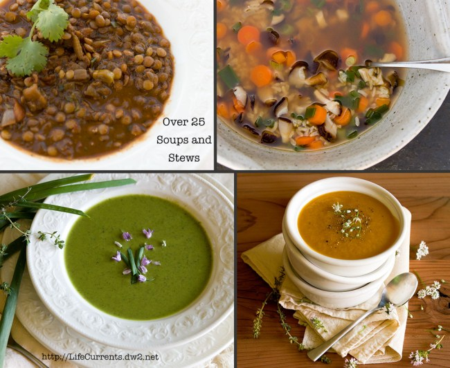 Soups and Stews to keep your tummy warm and happy! | Life Currents