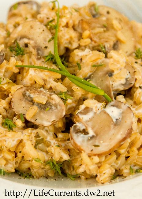 Mushroom Stroganoff: a delightful vegetarian main dish that your whole family will love!