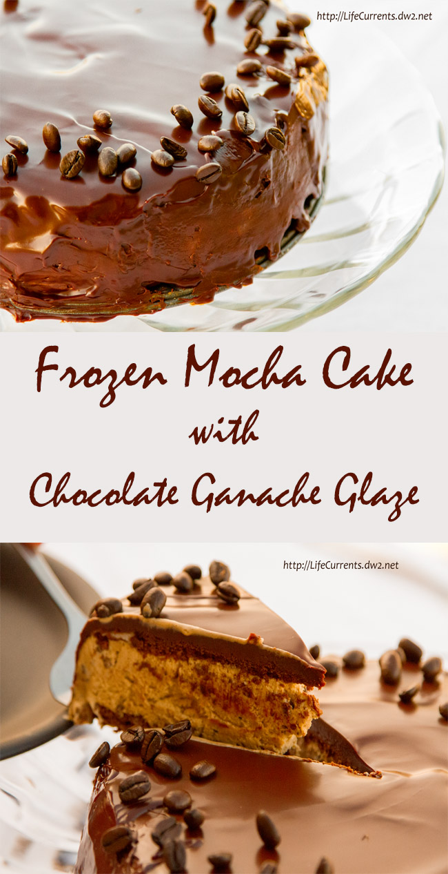 Frozen Mocha Cake with Chocolate Ganache Glaze