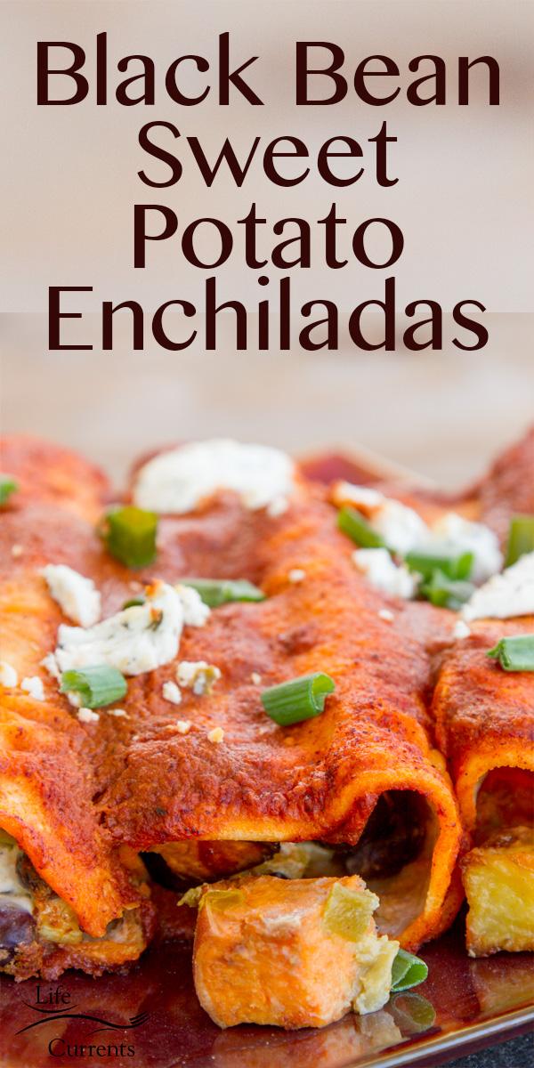Black Bean Sweet Potato Enchiladas - perfect Meatless Monday dinner!