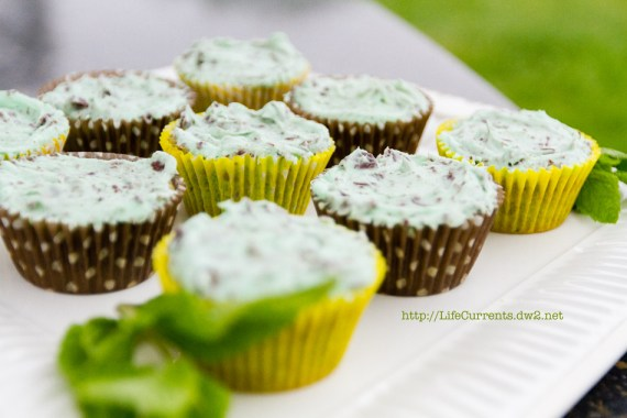 Mint 'n' chip Cupcakes | Life Currents Maria's Baby Shower: As many of you know, my brother and sister in-law are expecting their first baby soon. Here are some pictures from the shower! #babyshower #party #shower